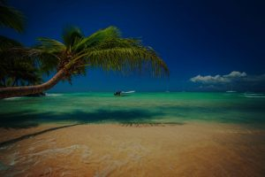 caribbean beach with boats on the water 300x200 - caribbean-beach-with-boats-on-the-water