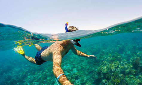 man snorkeling in the ocean above a coral reef - Club Med